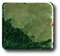 Website 1st land